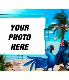Summer photomontage to put your photo on a beach