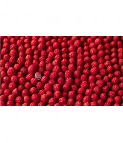 Game for your picture with a stack of raspberries