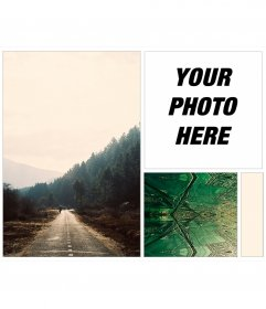 Indie collage to put your photo on a background of a forest road and fractals