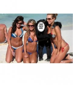 Create this photomontage to be a monkey with three girls in swimsuit