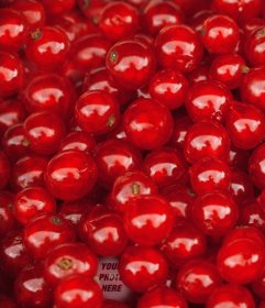 Set a red cherries to find your photo