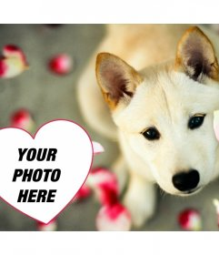 Cute photo effect to add your photo in a heart with a puppy