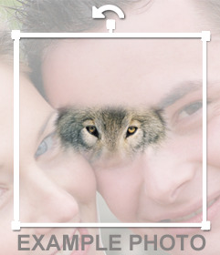 Add the wolf eyes in your photos with this online photomontage