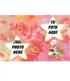 Frame for two photos with star-shaped flowers and pastel color