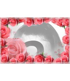 Photo frame surrounded by pink roses and your photo