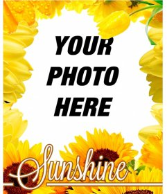 Photo frame made of yellow flowers, like tulips and sunflowers to put your photo on the background