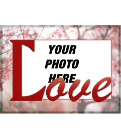 Frame your photo on a background of cherry blossoms and the word LOVE