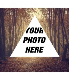 Background collage of triangular hipster shape on a background of trees