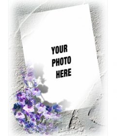 Framework for a photo with border of violet flowers