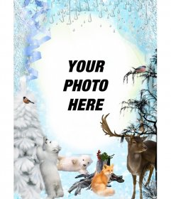 Winter photo montage with several animals