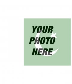 Pakistan Flag Images to put in your photo
