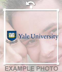 Sticker of the University of Yale
