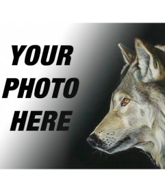 Photomontage with a picture of a wolf to make collages with your own images and phrases