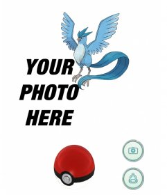 Catch Articuno with this effect of Pokemon Go to edit