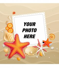 Customize your avatar with a beach background with starfish summer for facebook and twitter