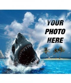 Photomontage of a shark biting your photo
