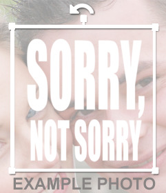 SORRY, NOT SORRY phrase to paste on your images as a sticker online