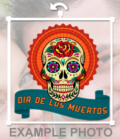 Sticker with skull and text for your photos