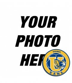 Photomontage with the shield of Tigres UANL of Mexico