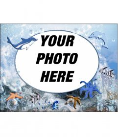 Round picture frame of marine animals to put your photo. with octopi, dolphins and starfish
