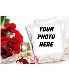Agreement to include your photo in a Christmas context, by red roses and gold, typical colors of Christmas